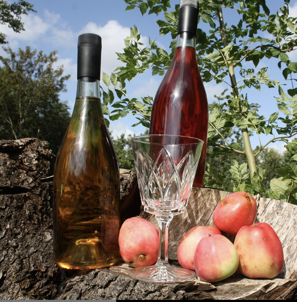 Fox Hill Winery - 1 ansat